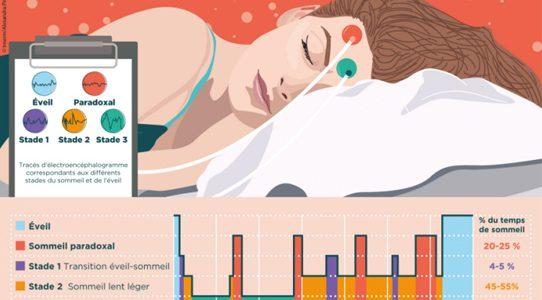 Quatre raisons pour lesquelles vous devriez dormir